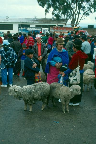 riobamba-2-ecuador
